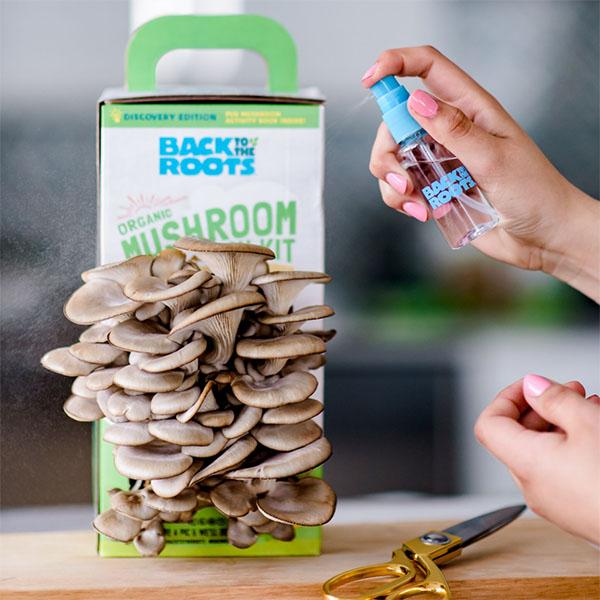 Trusa pentru cultivarea ciupercilor organice Roots